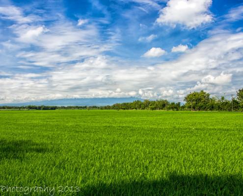 Foto's Indonesië - Java - landschap | Reisfotografie Tux Photography