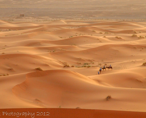 Foto's Marokko - Sahara