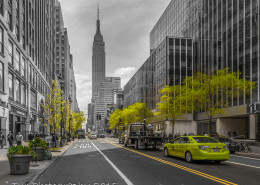 Foto's New York - Empire State Building | Foto Tux Photography